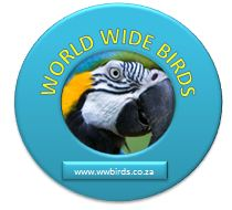 Bird count - South Africa