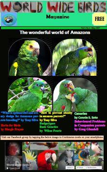 Bird magazine May edition