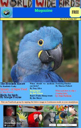 World Wide Birds Magazine Vol 1 No 9