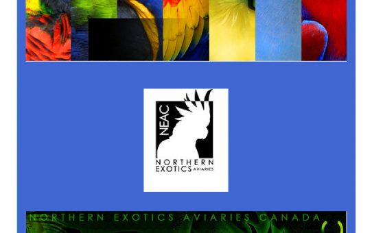 Northern Exotics Information Charts - Free E-Book