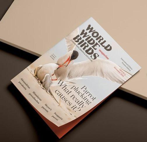 world wide birds magazine printed