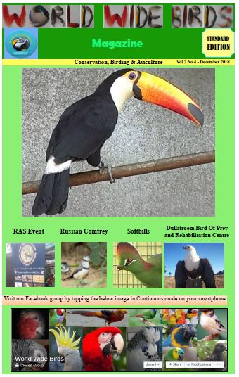 World Wide birds magazine Volume 2 No 4 December 2018