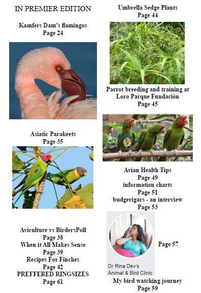 World Wide birds magazine Volume 3 No 2 April 2019 Index