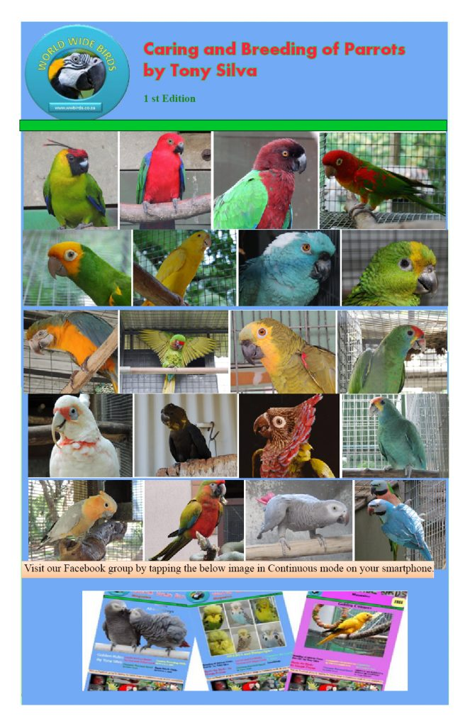 Caring and Breeding of Parrots eBook