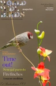 Word Wide birds magazine cover South Africa March 2021