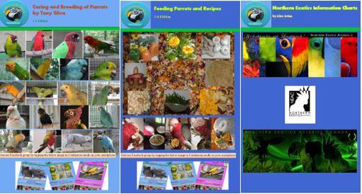 bird ebooks free
