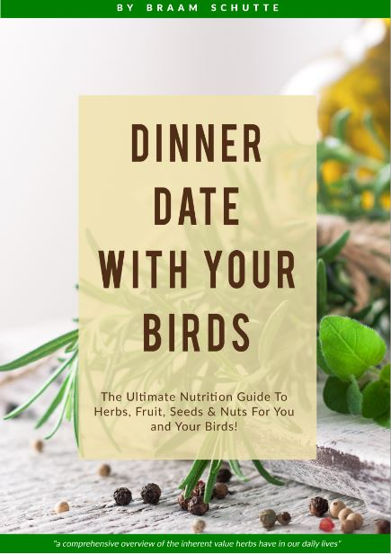 Dinner date with your birds